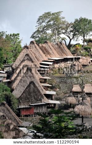 Traditional vilage in Bajawa (Flores - Indonesia)