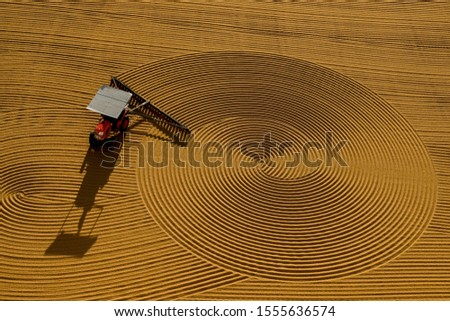 traditional wheat drying and shapes  #1555636574