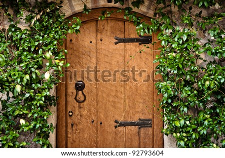 Traditional wooden door with green plant