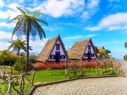 Traditionall hut houses and garden of Madeira on the village Santana on a sunny day in Portugal