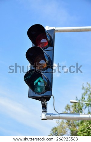 Traffic lights at the road crossing
