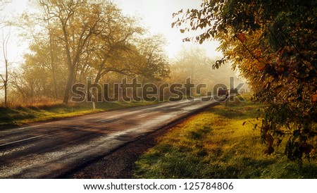 Traffic on the road through forest in sunset