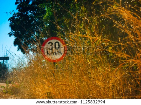 Traffic sign on a dirt road, with dry vegetation and green vegetation. #1125832994