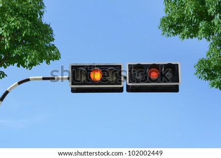 Traffic signal with green leaves and blue sky