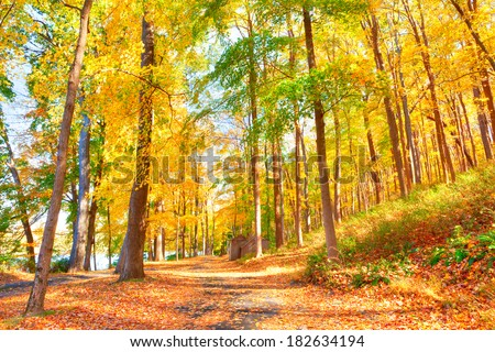 Trail in Delaware Water Gap  in Autumn with colorful foliage.