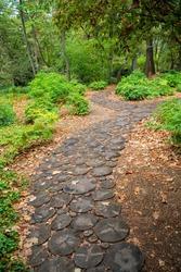 Trail in the botanical garden, Crimea