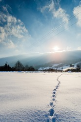Trail in the snow at sunrise and sunset.  Footprints in the snow in the forest. Winter background. Trail, traces of people in fresh snow. Snowdrift. Footprints in the sunset at winter. Background.