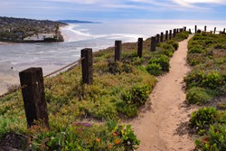 Trail Leading to Ocean in on Sunny Beach Hillside