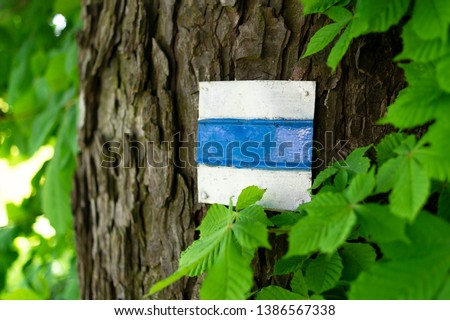 Trail marking on tree in Czech Republic / Czechia. Painted mark for tourist, hiker and trekker. Method of navigation on touristic routes and paths in nature. Very low depth of field #1386567338