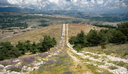 Trail path following the hill with lavender, pine trees and mountains in the background. In provence near Gourdon and Grasse,  Alpes maritimes French Riviera