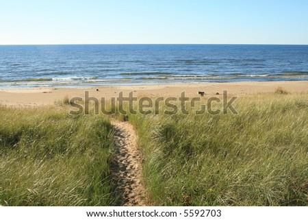 Trail through the Sand Dunes to Lake Michigan - stock photo