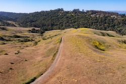 Trails meander through the grass-covered hills of the East Bay, just a few miles from San Francisco Bay in Northern California. This area provides open spaces for hikers, bikers, and grazing cows.