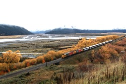 train going on the way on authum in newzealand with mountain background