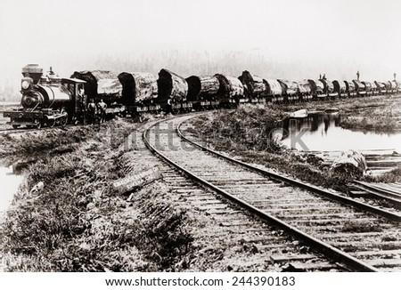 train of huge redwood logs of...