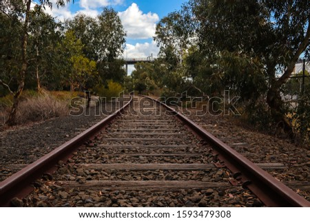 Train rails vanishing in a tranquil forest