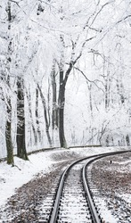 Train tracks leading through snow into forest