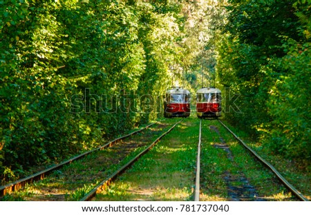 Tram and tram rails in colorful forest close up #781737040