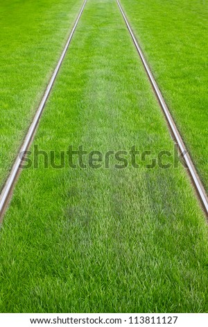 Tram tracks surrounded by green grass