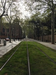 tramway. the tramway is covered with green grass. people are walking on the tramway next to the barcelona university