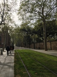 tramway, the tramway is covered with green grass,  people are walking on the tramway next to the barcelona university