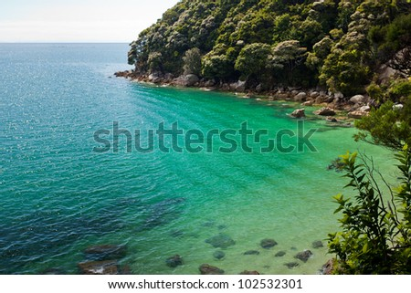 Tranquil bay framed by lush subtropical forest of Abel Tasman National Park, South Island, New Zealand