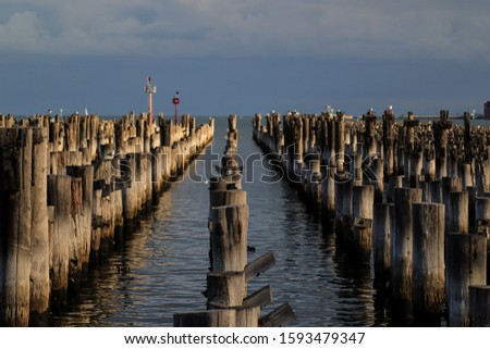 Tranquil pier full of poles at sunset
