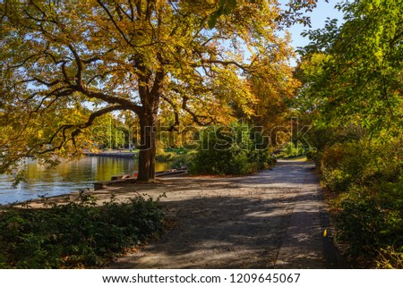 Tranquil scenic small street waterfront  of Wannsee lake under the shadow of tree, shrub with autumn leaf in Berlin, Germany