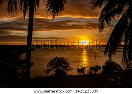Tranquil sunset over the lake. The whole scene covered in golden colors. Silhouettes of palm trees. Water calm. Concept of tranquility. Vacation landscape. #1423223339