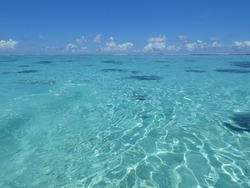 Translucent turquoise, rippling ocean, vivid blue sky. A tranquil paradise.