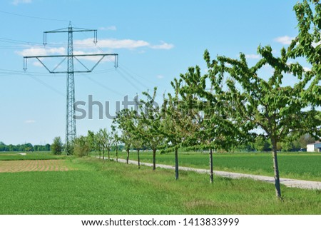 Transmission tower as visual pollution in rural field landscape with trees and path