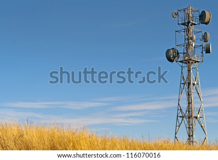 Transmitter tower