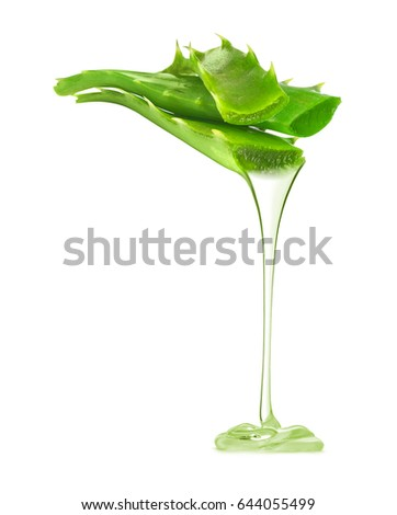 Transparent essence from aloe vera plant drips from leaves, isolated on white background