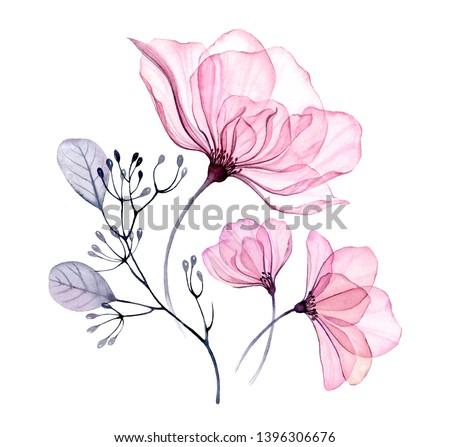 Transparent floral set isolated arrangement of big pink roses, buds, leaves, branches in pastel grey, violet, purple, vintage ornament, wedding design, stationery card print