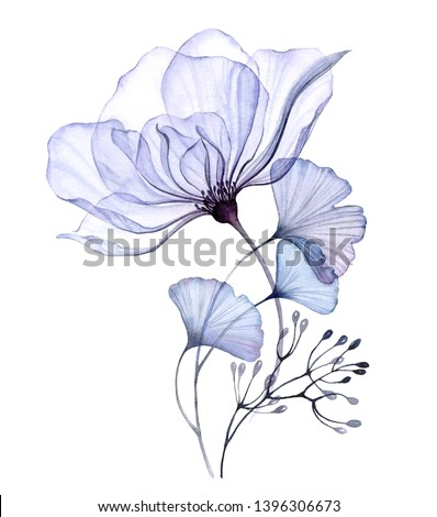 Transparent floral set isolated arrangement of big roses, buds, leaves, branches in pastel pink, grey, blue, violet, purple, vintage ornament, wedding design, stationery card print Foto stock ©