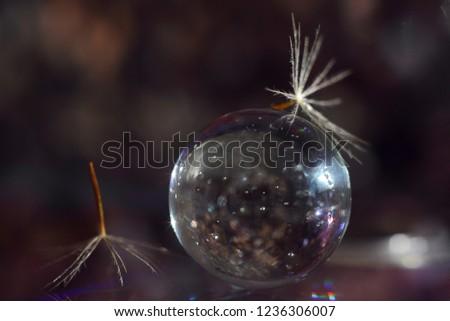 Transparent glass ball #1236306007