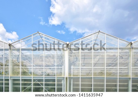 Transparent green house for growing organic vegetables. Big industrial greenhouse from glass panels on blue sky background. Cultivating agricultural plant. Agriculture glasshouse for growing plants. #1411635947