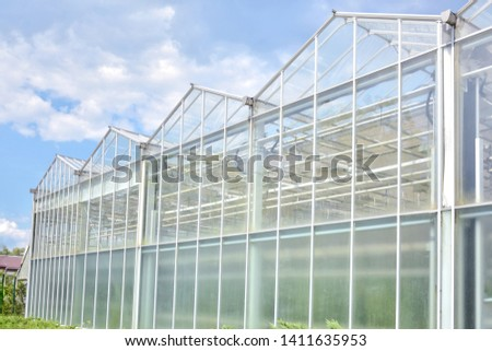 Transparent green house for growing organic vegetables. Big industrial greenhouse from glass panels on blue sky background. Cultivating agricultural plant. Agriculture glasshouse for growing plants.