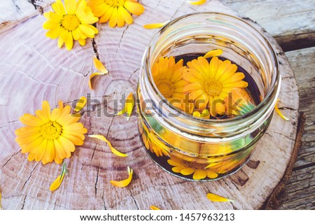 Transparent jar of calendula tincture with a fresh plant of calendula officinalis. Extract of tincture of calendula. Medicinal plants.
