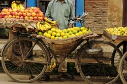 transport of fruits