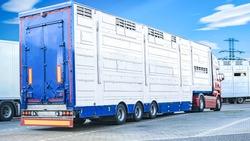transportation livestock . Horse transportation van , equestrian sport
