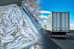 Transportation of frozen food. A refrigerator truck transports frozen seafood. Fish briquettes on the background of a truck. Logistics in the fishing industry.