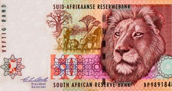 Transvaal Lions with cub drinking water at center, male lion head. Portrait from South Africa 50 Rand 1992  Banknotes. An Old paper banknote, vintage retro. Famous ancient Banknotes. Collection