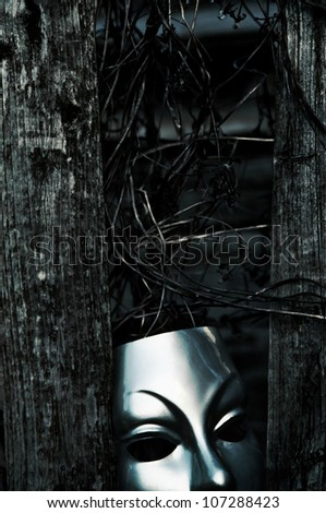 Trapped - Mask behind Weathered Fence