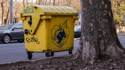 trash can with graffiti Ecology