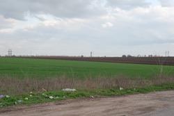 trash roadside minimalistic village landscape green grass field polluted with waste plastic roadside.