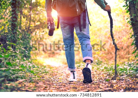Shutterstock Travel and hiking along the forest path in autumn season - Young man walking in woods holding stick and camera - Concept of adventure, trekking and seasonal vacation with rear view of tourist on trail