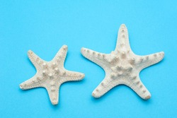 Travel background. Starfishes on a blue background