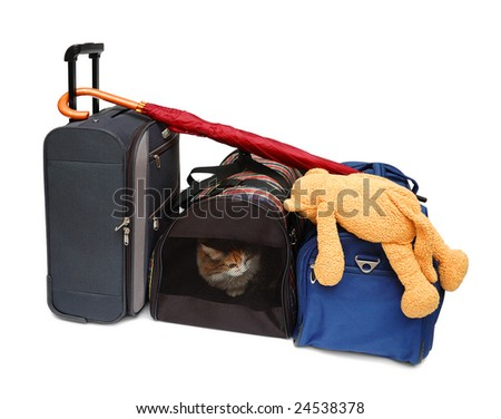 Travel bags and pet carrier isolated over white background - stock photo