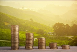 Travel Concept : Gold coin stacked on nature background