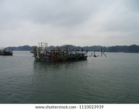 travel in cat ba searching for some floating houses #1110023939